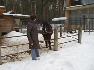 Лошади в Серафимо-Знаменском скиту