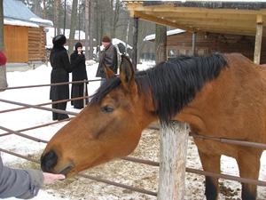 Конюшня Серафимо-Знаменского скита
